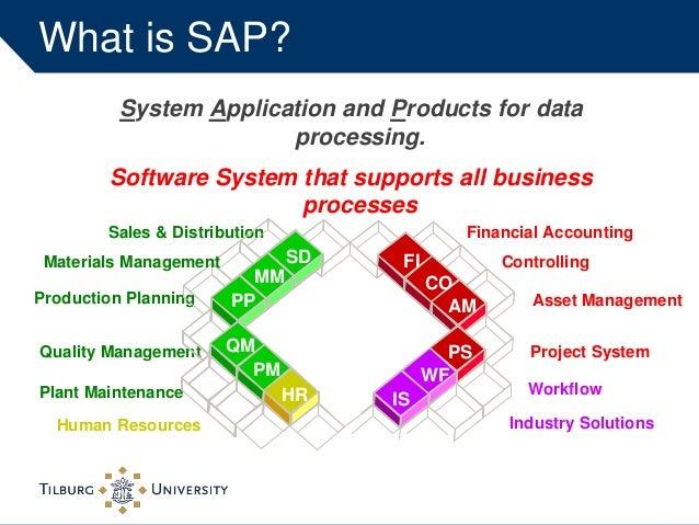 sap system application product Master International Management 2014