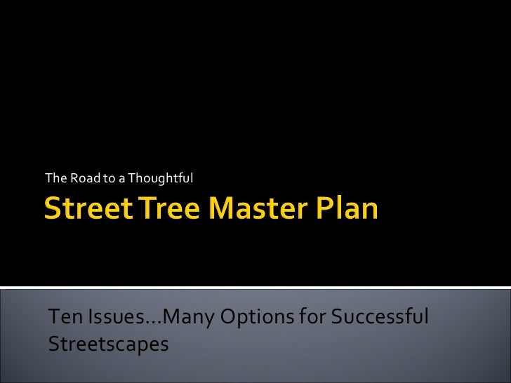 The Road to a Thoughtful Ten Issues…Many Options for Successful Streetscapes