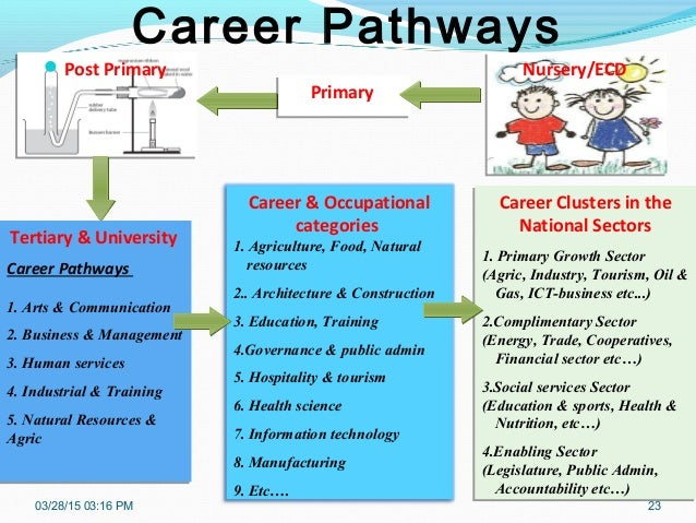 career pathways of three social care sectors essay Making caring a career  appendix 3: contributors to the cavendish review   that unregistered staff in the nhs and social care treat all patients and clients  with  develop innovative funding routes for non-traditional staff to progress   the department of health should explore with the social care sector how to move  to.