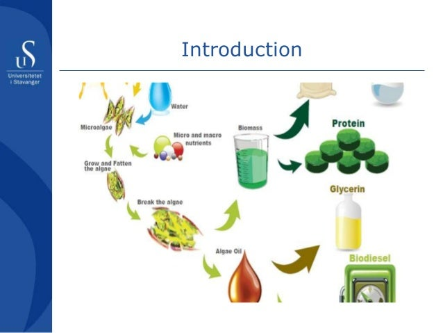 cadmium dissertation in natural speciation water Speciation of metals in natural waters  humic acid natural water  complexation of cadmium by natural organic ligands in the central north pacific.