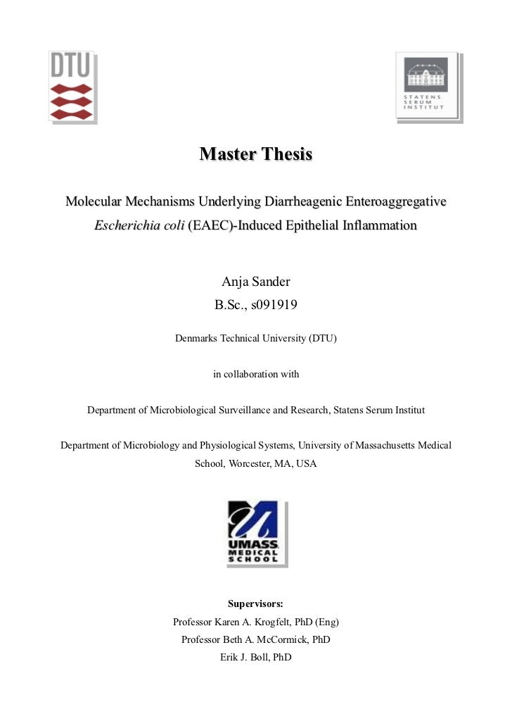 dtu master thesis defense