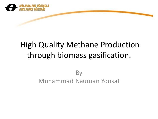 biomass gasification thesis Permeability of coal-biomass mixtures for high pressure gasifier feeds a thesis in  for coal gasification can accommodate biomass feeds (beenackers, 1999).
