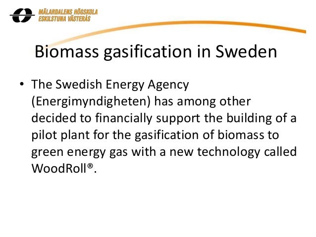 Biomass for Electricity Generation