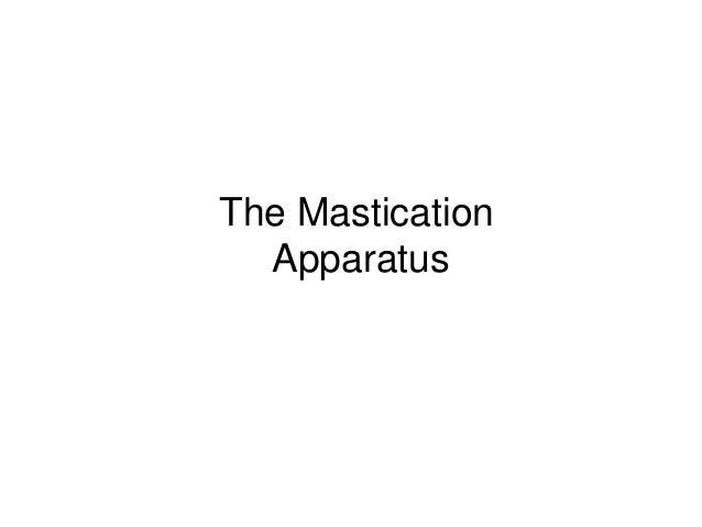 The Mastication Apparatus
