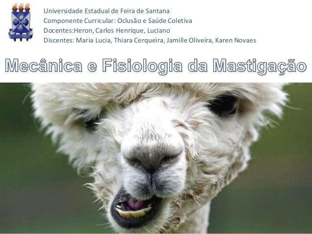 Universidade Estadual de Feira de Santana Componente Curricular: Oclusão e Saúde Coletiva Docentes:Heron, Carlos Henrique,...