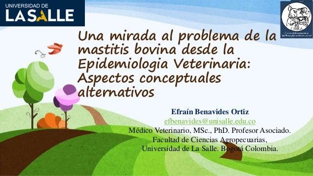 Una mirada al problema de la mastitis bovina desde la Epidemiologia Veterinaria: Aspectos conceptuales alternativos Efraín...