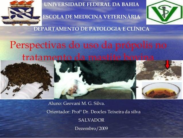 UNIVERSIDADE FEDERAL DA BAHIA       ESCOLA DE MEDICINA VETERINÁRIA     DEPARTAMENTO DE PATOLOGIA E CLÍNICAPerspectivas do ...