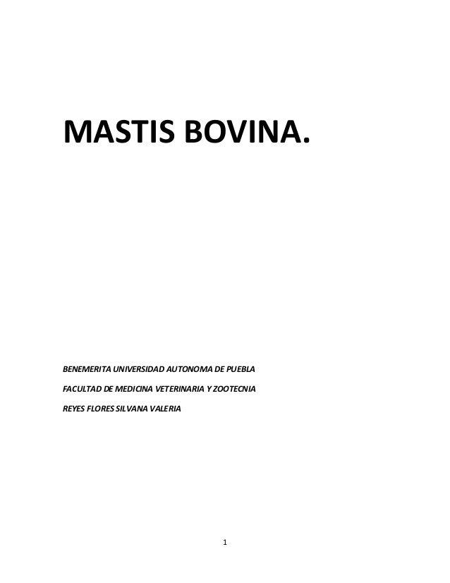 MASTIS BOVINA.  BENEMERITA UNIVERSIDAD AUTONOMA DE PUEBLA FACULTAD DE MEDICINA VETERINARIA Y ZOOTECNIA REYES FLORES SILVAN...