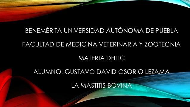 BENEMÉRITA UNIVERSIDAD AUTÓNOMA DE PUEBLA FACULTAD DE MEDICINA VETERINARIA Y ZOOTECNIA  MATERIA DHTIC ALUMNO: GUSTAVO DAVI...