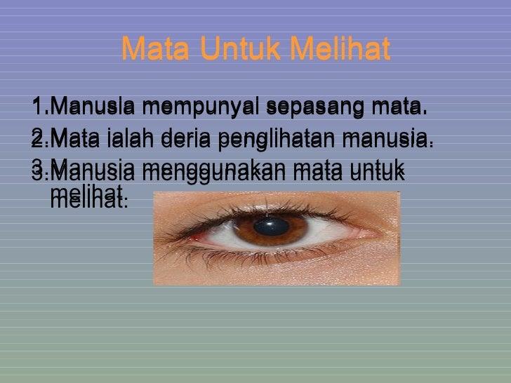 Mata Untuk Melihat <ul><li>1.Manusia mempunyai sepasang mata. </li></ul><ul><li>2.Mata ialah deria penglihatan manusia. </...