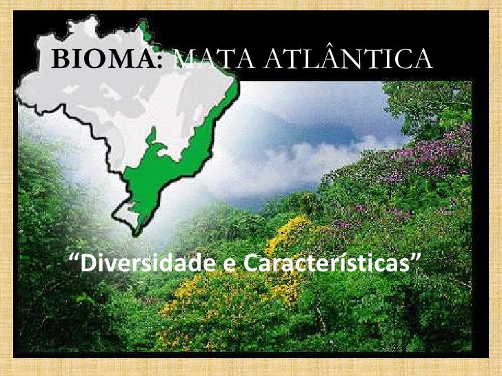 """BIOMA: MATA ATLÂNTICA<br />""""Diversidade e Características""""<br />"""