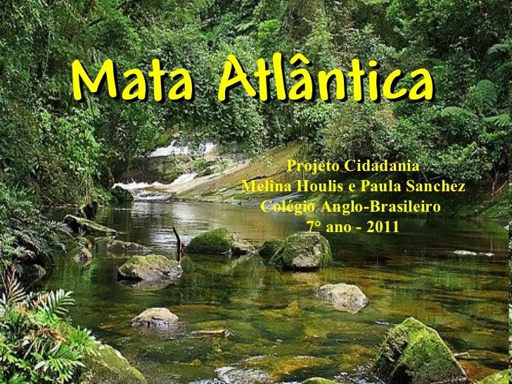 Mata Atlântica           Projeto Cidadania      Melina Houlis e Paula Sanchez       Colégio Anglo-Brasileiro              ...