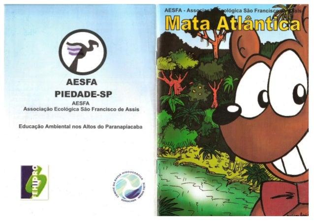 Mata Atlântica AESFA