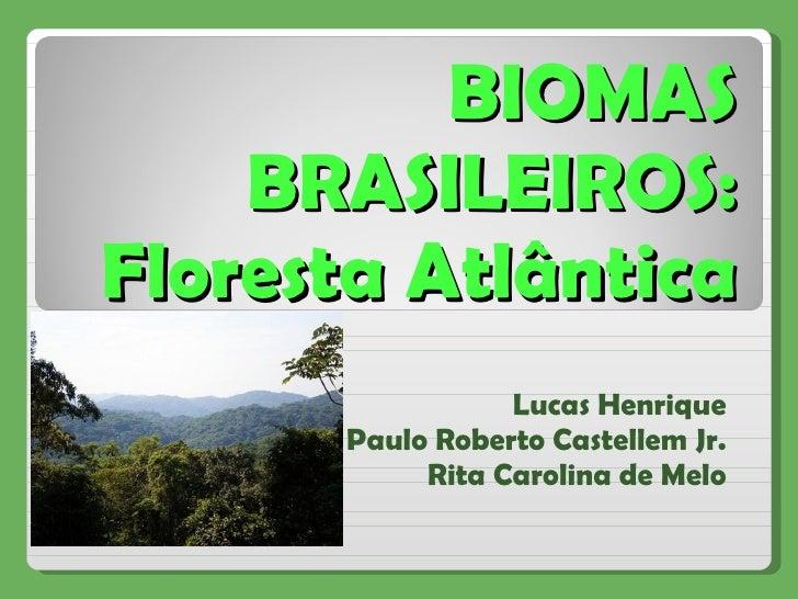 BIOMAS BRASILEIROS: Floresta Atlântica Lucas Henrique Paulo Roberto Castellem Jr. Rita Carolina de Melo
