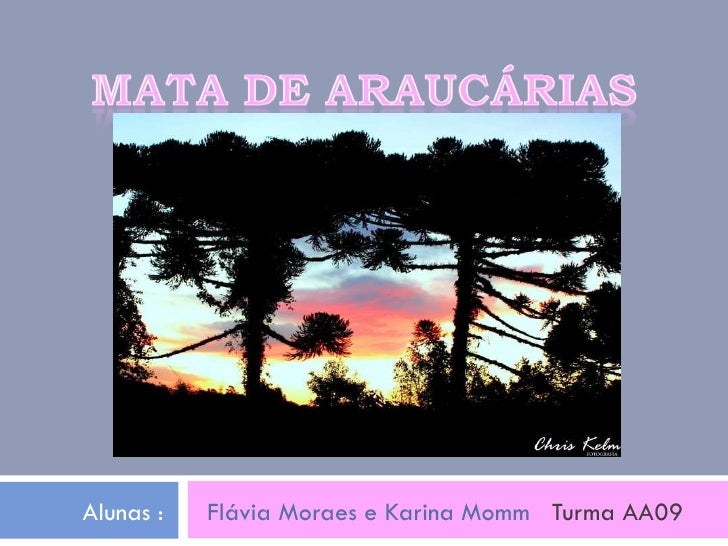 Alunas :  Flávia Moraes e Karina Momm  Turma AA09