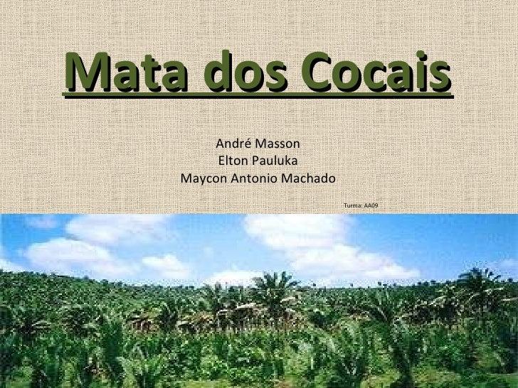 Mata dos Cocais André Masson Elton Pauluka Maycon Antonio Machado Turma: AA09