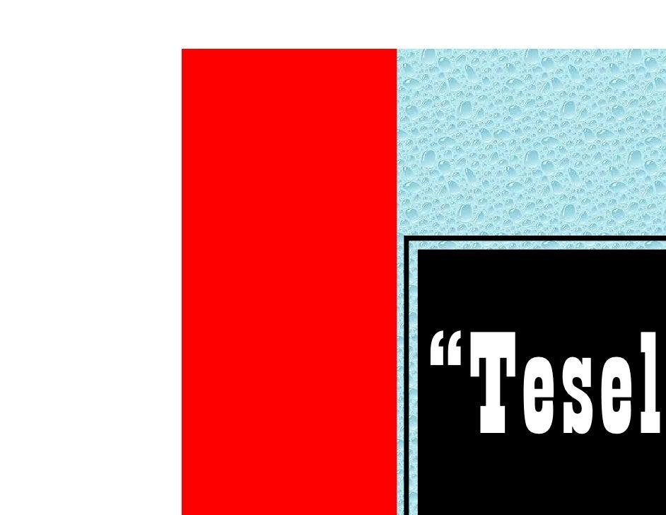 """""""Tesela"""