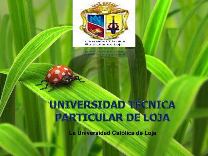 UNIVERSIDAD TÉCNICA PARTICULAR DE LOJA<br />La Universidad Católica de Loja<br />