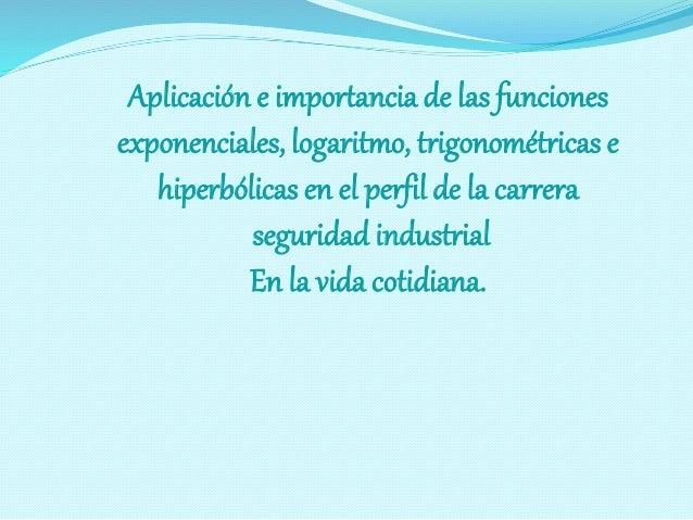 Aplicación e importancia de las funciones  exponenciales, logaritmo, trigonométricas e  hiperbólicas en el perfil de la ca...