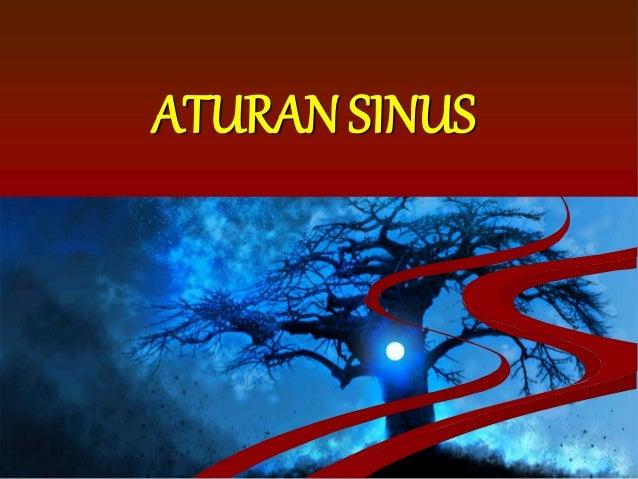 ATURAN SINUS