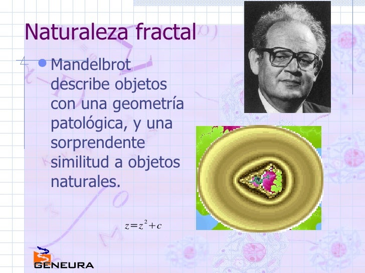 Naturaleza fractal <ul><li>Mandelbrot describe objetos con una geometría patológica, y una sorprendente similitud a objeto...
