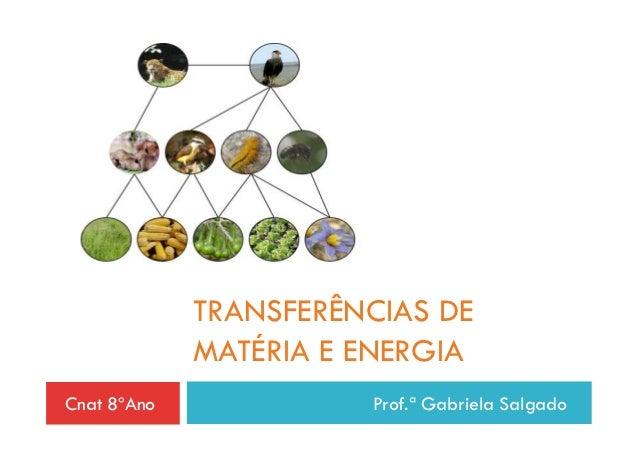 TRANSFERÊNCIAS DE             MATÉRIA E ENERGIACnat 8ºAno             Prof.ª Gabriela Salgado
