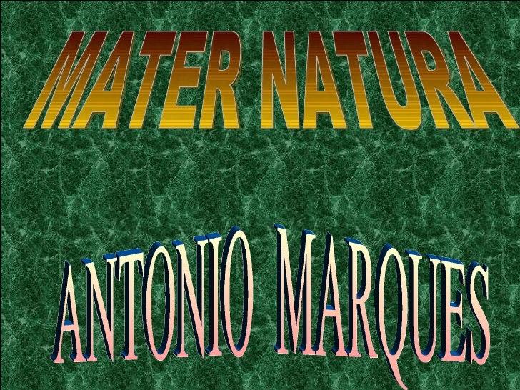 MATER NATURA ANTONIO  MARQUES