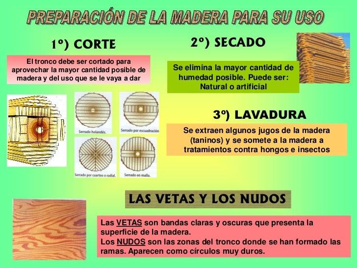 1º) CORTE                           2º) SECADO    El tronco debe ser cortado paraaprovechar la mayor cantidad posible de  ...