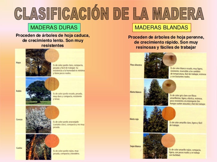Materiales de uso tecnico for Arboles perennes de crecimiento rapido en argentina