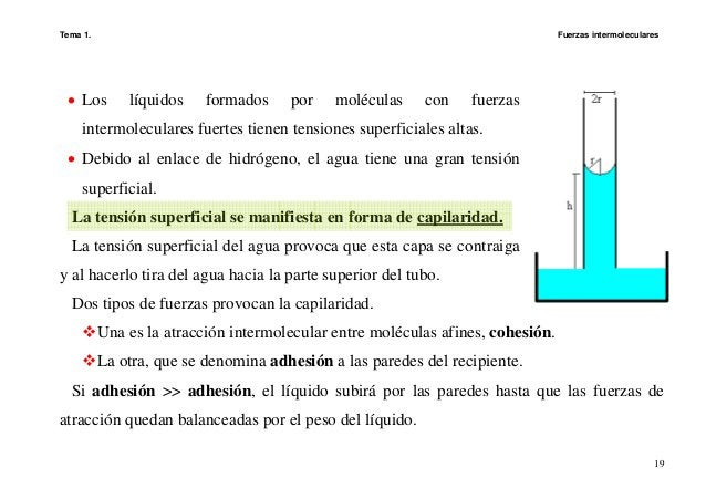 Tema 1. Fuerzas intermoleculares 19 • Los líquidos formados por moléculas con fuerzas intermoleculares fuertes tienen tens...