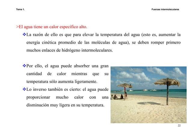 Tema 1. Fuerzas intermoleculares 22 >El agua tiene un calor específico alto. La razón de ello es que para elevar la temper...