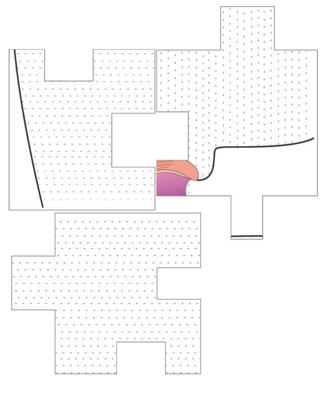 Material rompecabezas sistema reproductor femenino
