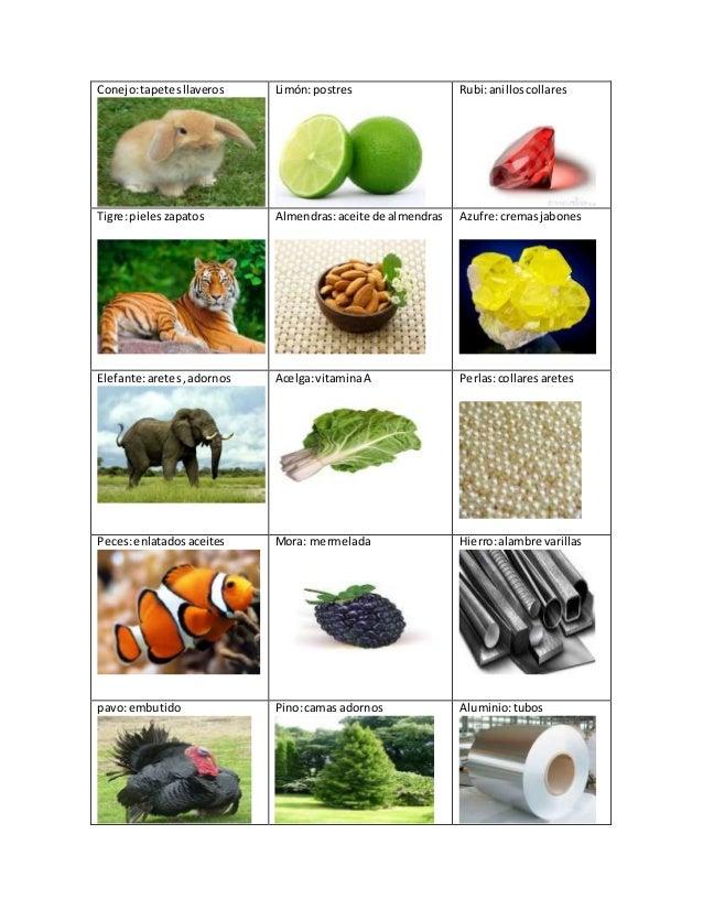 Materia Prima Aretes De Coco