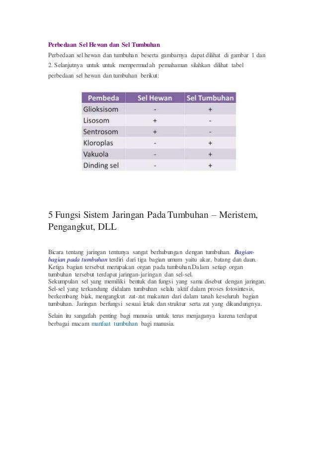 80 Gambar Jaringan Sel Hewan Dan Tumbuhan Beserta Fungsinya HD Terbaru