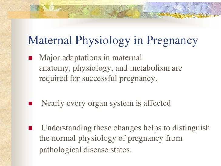 Maternal Physiology in Pregnancy Slide 2