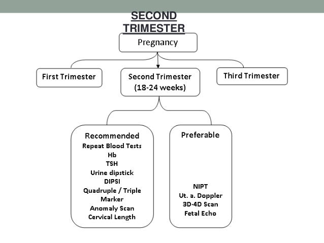 Maternal screening in pregnancy final