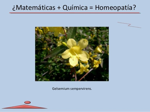 ¿Matemáticas + Química = Homeopatía? Gelsemium sempervirens.
