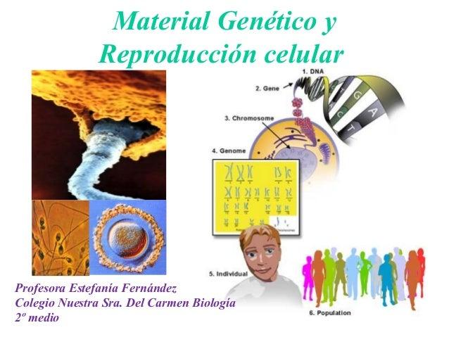Material Genético y               Reproducción celularProfesora Estefanía FernándezColegio Nuestra Sra. Del Carmen Biologí...