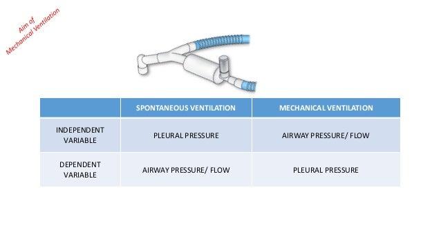 SPONTANEOUS VENTILATION MECHANICAL VENTILATION INDEPENDENT VARIABLE PLEURAL PRESSURE AIRWAY PRESSURE/ FLOW DEPENDENT VARIA...