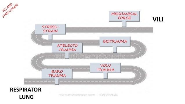 MECHANICAL FORCE BIOTRAUMA ATELECTO TRAUMA BARO TRAUMA VOLU TRAUMA RESPIRATOR LUNG VILI STRESS- STRAIN
