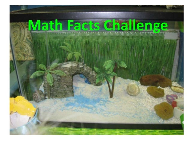 Math Facts Challenge