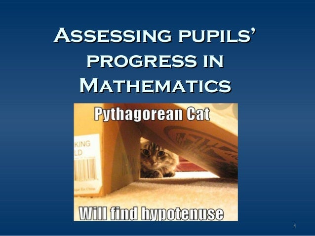 Assessing pupils' progress in Mathematics  1