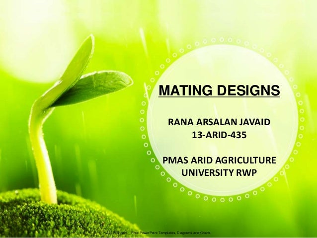 Mating designs mating designs allppt free powerpoint templates diagrams and charts rana arsalan javaid toneelgroepblik Choice Image