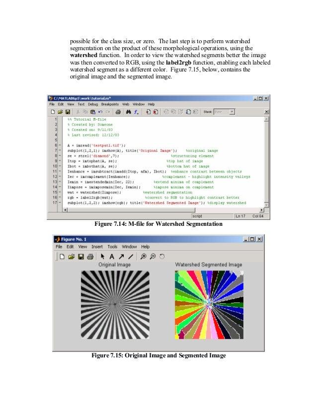 matlab image processing tutorial pdf
