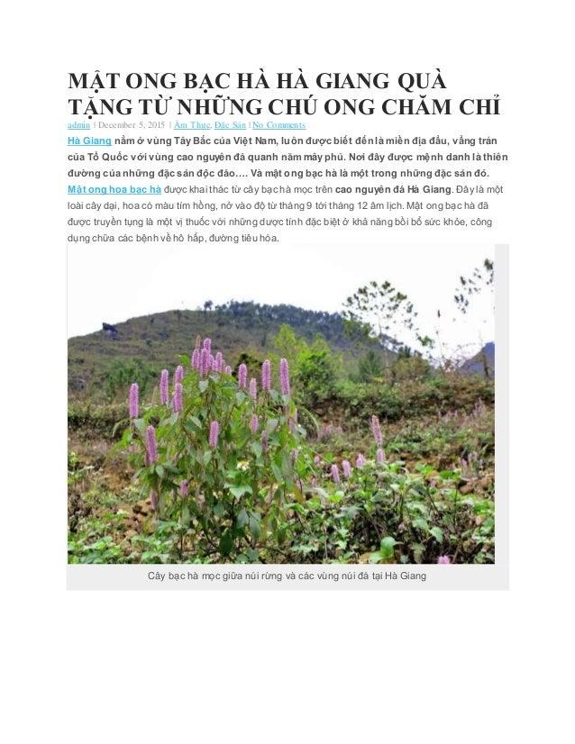 MẬT ONG BẠC HÀ HÀ GIANG QUÀ TẶNG TỪ NHỮNG CHÚ ONG CHĂM CHỈ admin   December 5, 2015   Ẩm Thực, Đặc Sản   No Comments Hà Gi...
