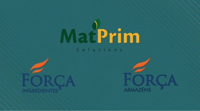 A primeira empresa do grupo, ForçaIngredientes, foi fundada em 1991.Representava com exclusividadematérias-primas usadas n...