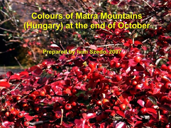 Colours of Matra Mountains (Hungary) at the end of October Prepared by Ivan Szedo, 2007