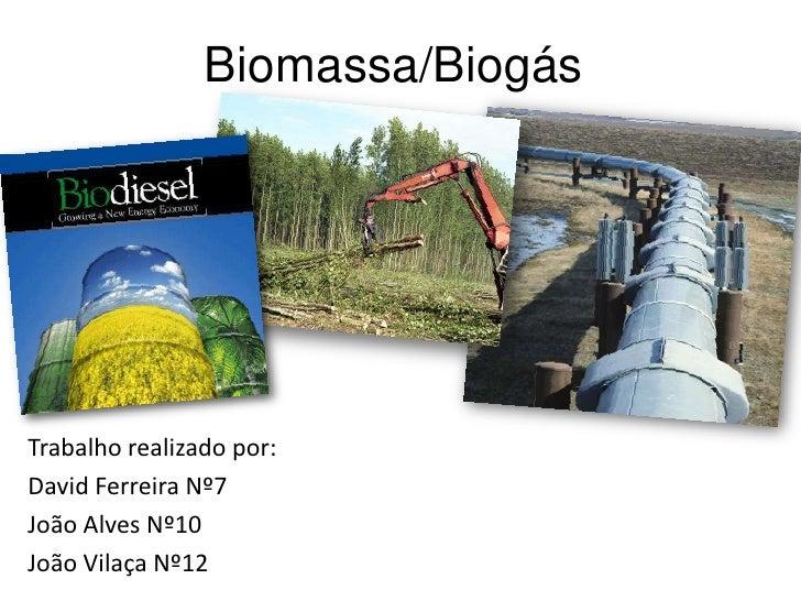 Biomassa/Biogás<br />Trabalho realizado por:<br />David Ferreira Nº7 <br />João Alves Nº10<br />João Vilaça Nº12<br />