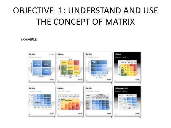 OBJECTIVE 1: UNDERSTAND AND USE     THE CONCEPT OF MATRIX EXAMPLE