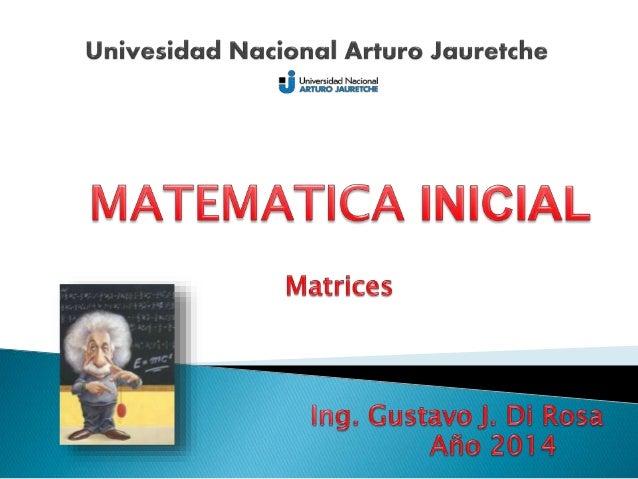 Los conceptos de matriz y todos los relacionados fueron  desarrollados básicamente en el siglo XIX por matemáticos como  l...